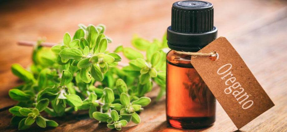 Эфирные масла — новые антибиотики?
